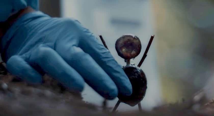 The Chestnut Man Review: Master Noir